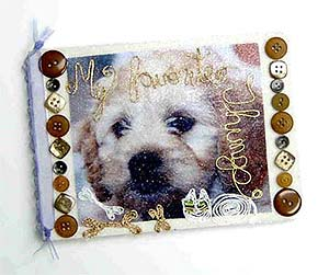 Beaded Dog Album